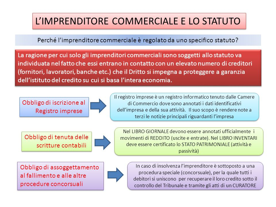 L'IMPRENDITORE COMMERCIALE E LO STATUTO
