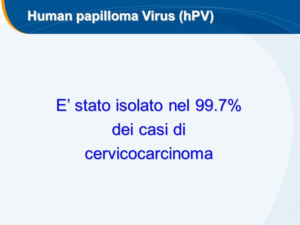 E' stato isolato nel 99.7% dei casi di cervicocarcinoma