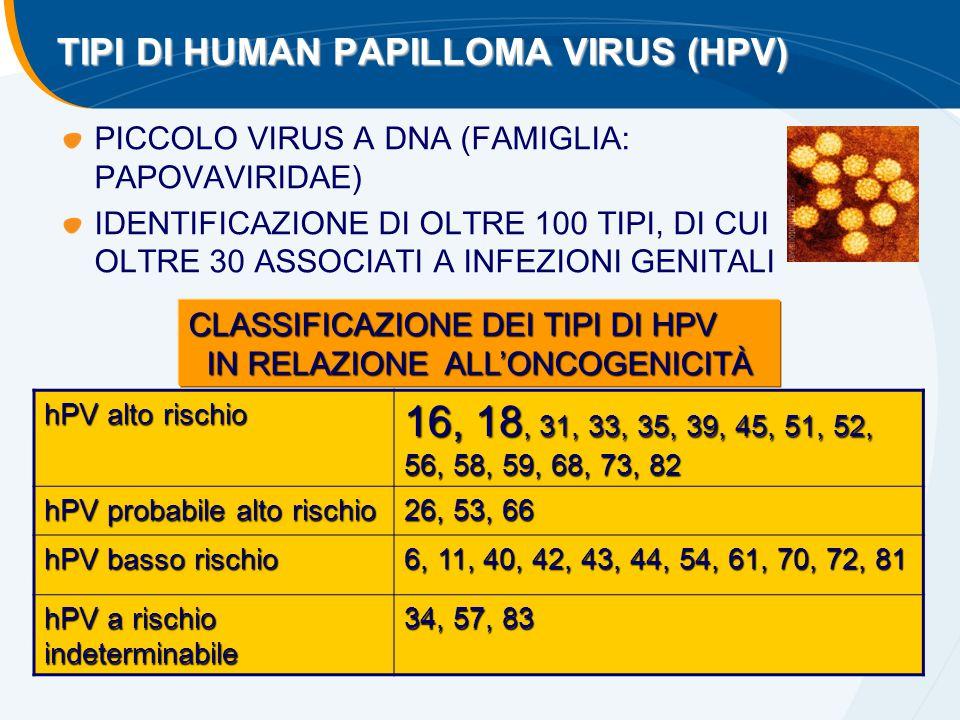 TIPI DI HUMAN PAPILLOMA VIRUS (HPV)