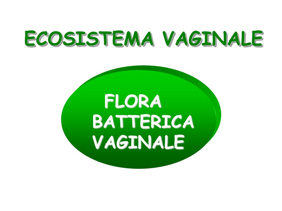 ECOSISTEMA VAGINALE FLORA BATTERICA VAGINALE