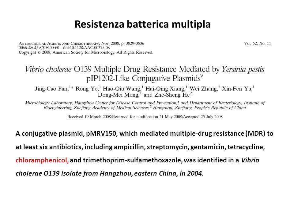 Resistenza batterica multipla