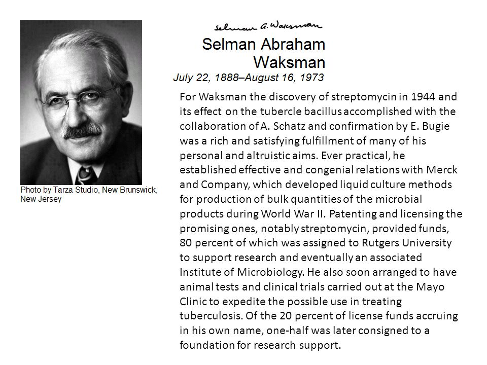 For Waksman the discovery of streptomycin in 1944 and its effect on the tubercle bacillus accomplished with the collaboration of A.