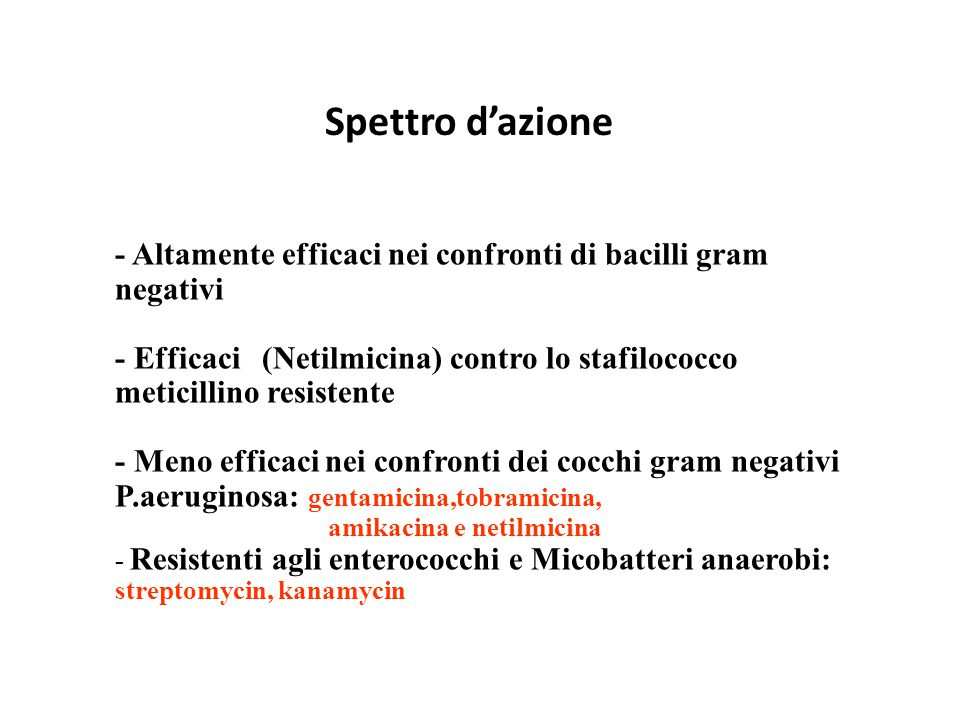 Spettro d'azione - Altamente efficaci nei confronti di bacilli gram negativi.