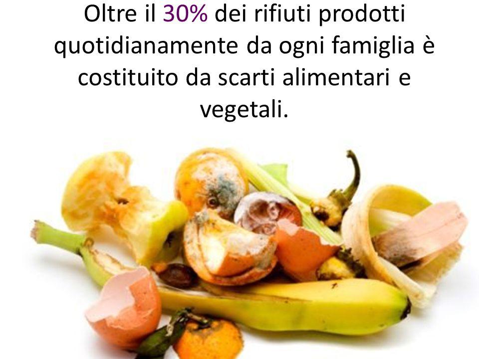 Oltre il 30% dei rifiuti prodotti quotidianamente da ogni famiglia è costituito da scarti alimentari e vegetali.