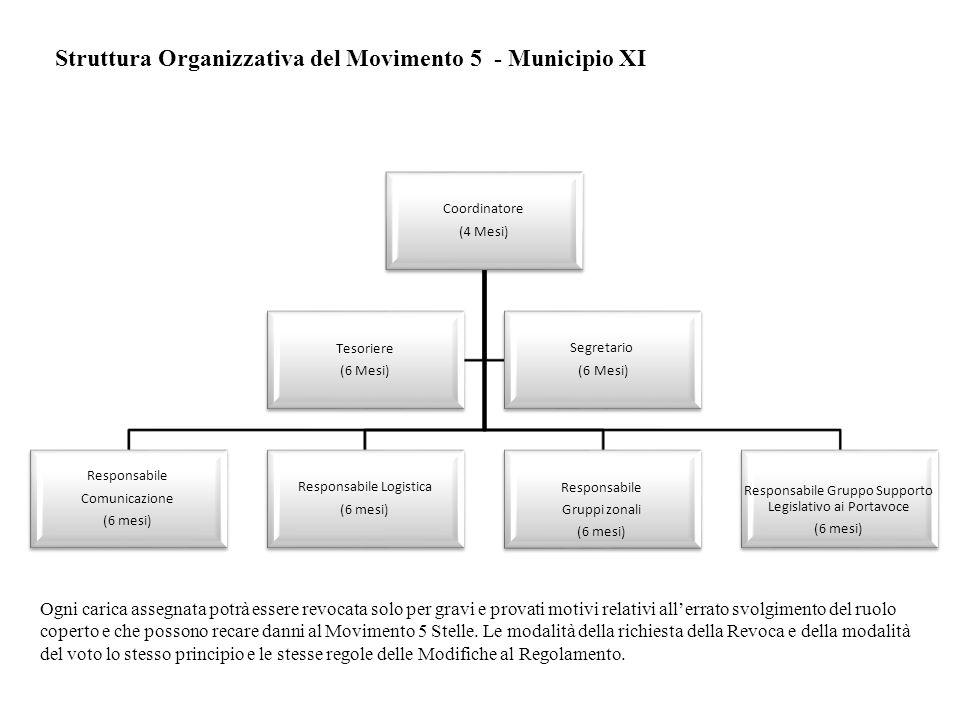 Struttura Organizzativa del Movimento 5 - Municipio XI