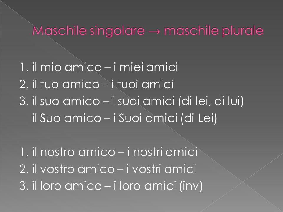 Maschile singolare → maschile plurale