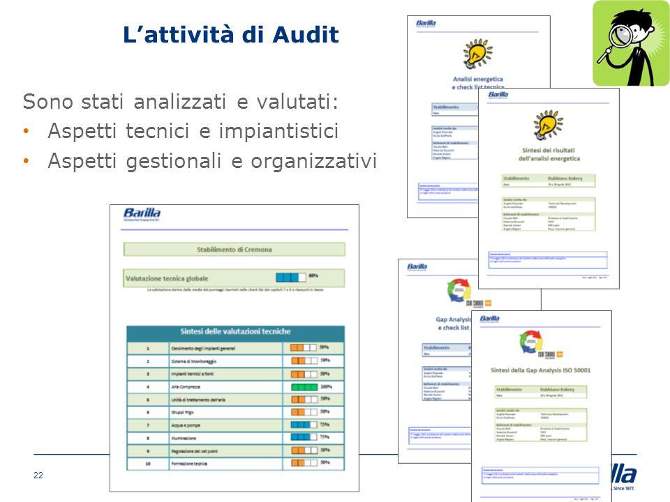 L'attività di Audit Sono stati analizzati e valutati:
