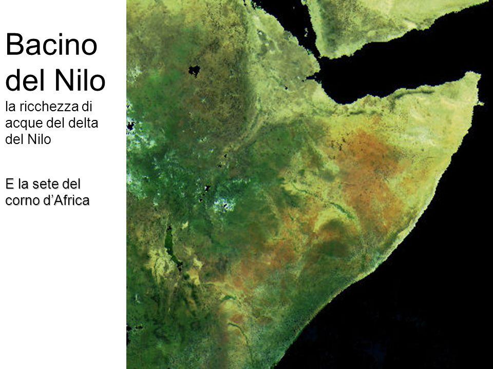 Bacino del Nilo la ricchezza di acque del delta del Nilo