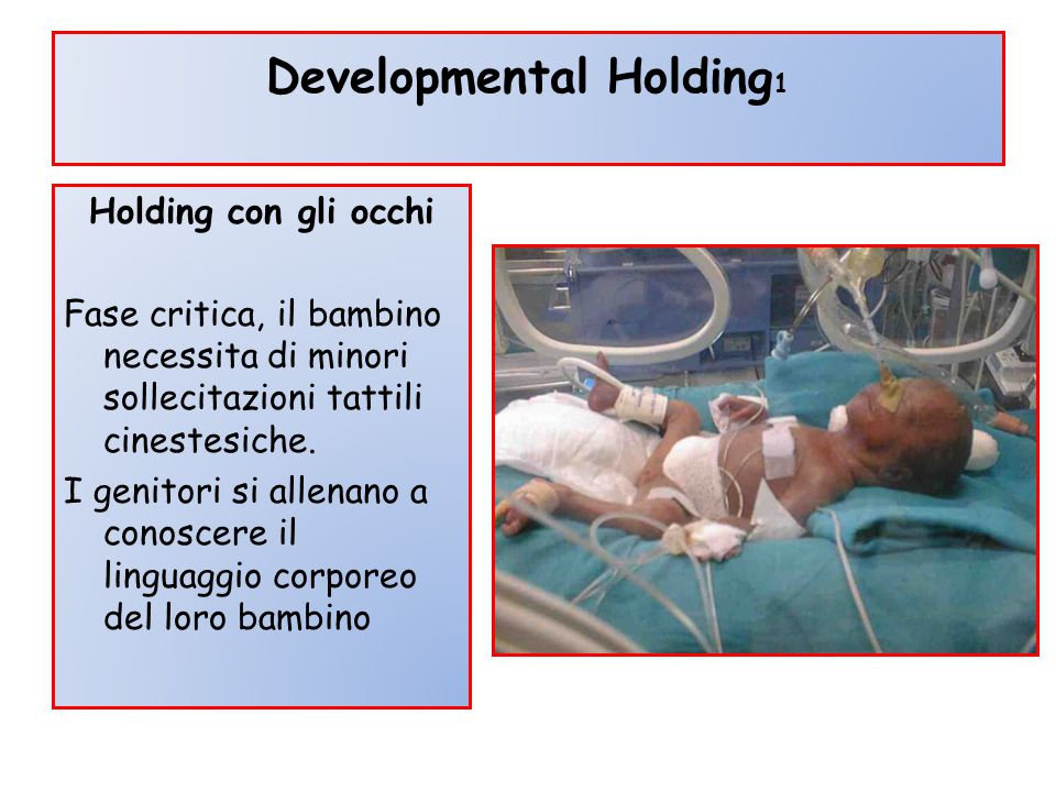 Developmental Holding1