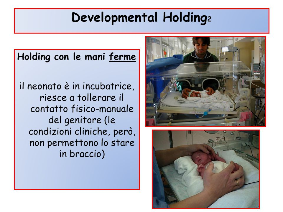 Developmental Holding2