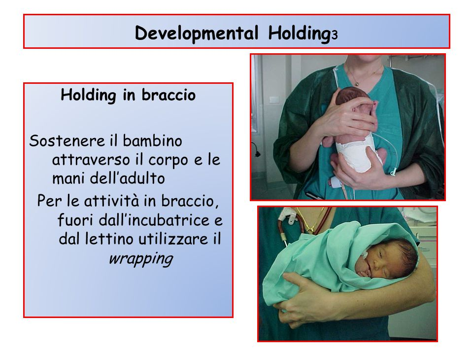 Developmental Holding3