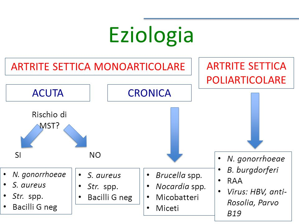 Eziologia ARTRITE SETTICA MONOARTICOLARE