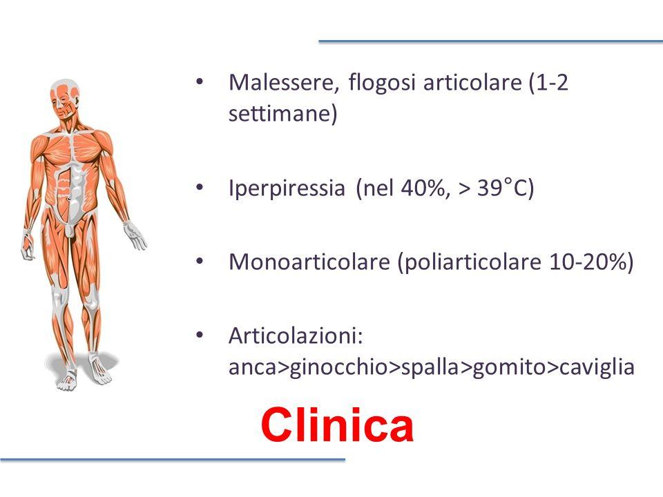 Clinica Malessere, flogosi articolare (1-2 settimane)