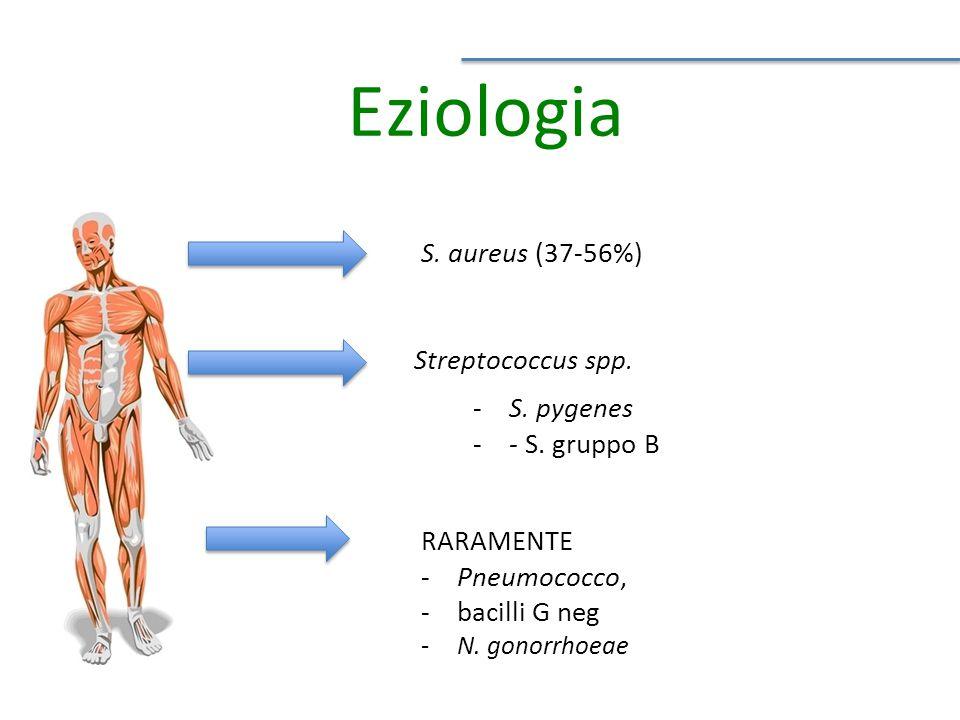 Eziologia S. aureus (37-56%) Streptococcus spp. S. pygenes