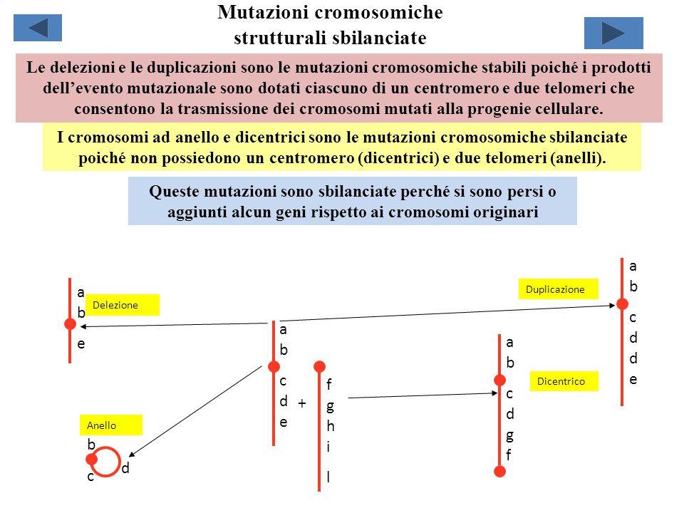 Mutazioni cromosomiche strutturali sbilanciate