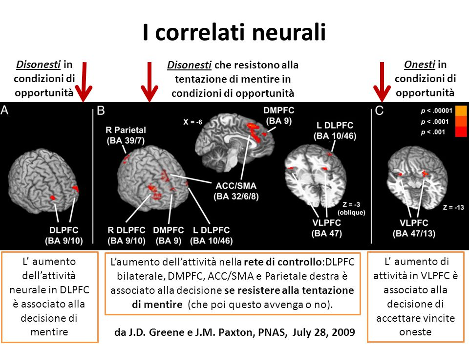 I correlati neurali Disonesti in condizioni di opportunità