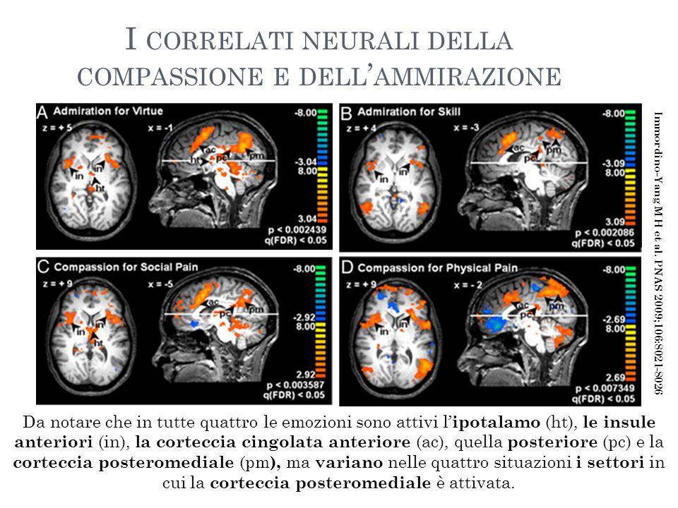 I correlati neurali della compassione e dell'ammirazione