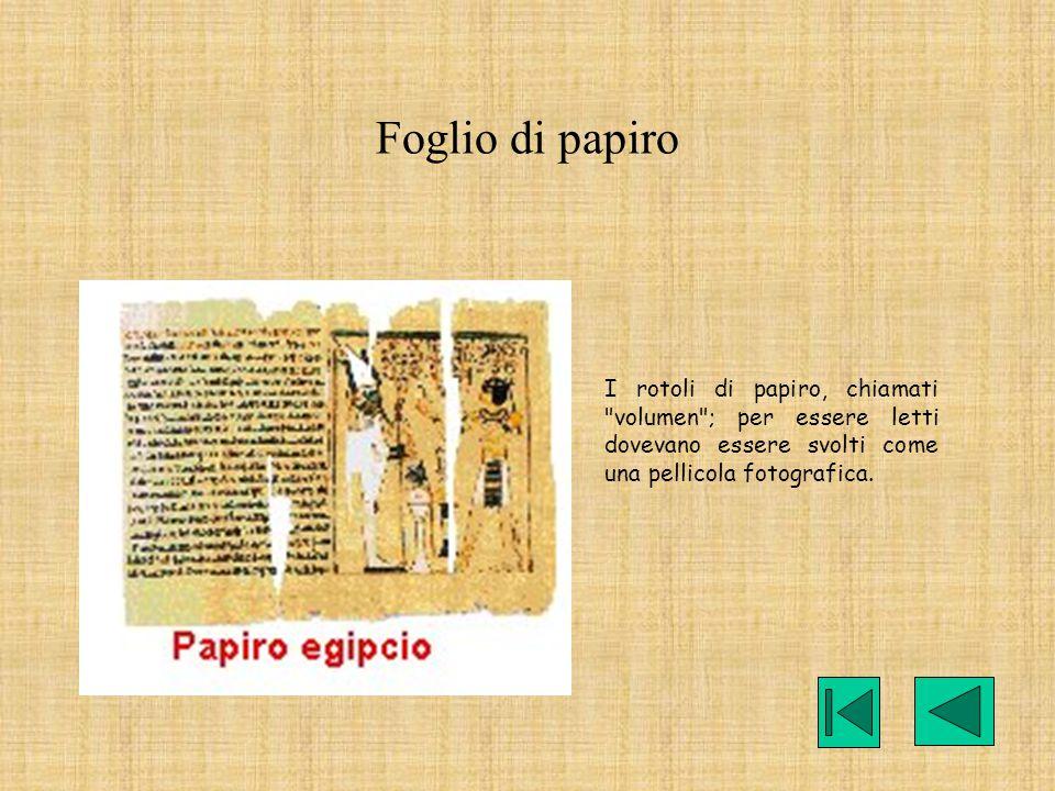Foglio di papiro I rotoli di papiro, chiamati volumen ; per essere letti dovevano essere svolti come una pellicola fotografica.