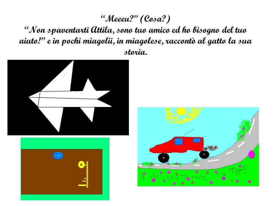 Meeeu (Cosa ) Non spaventarti Attila, sono tuo amico ed ho bisogno del tuo aiuto! e in pochi miagolii, in miagolese, raccontò al gatto la sua storia.