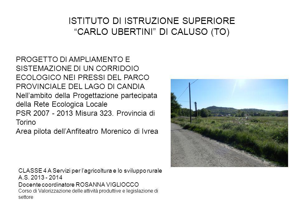 ISTITUTO DI ISTRUZIONE SUPERIORE CARLO UBERTINI DI CALUSO (TO)