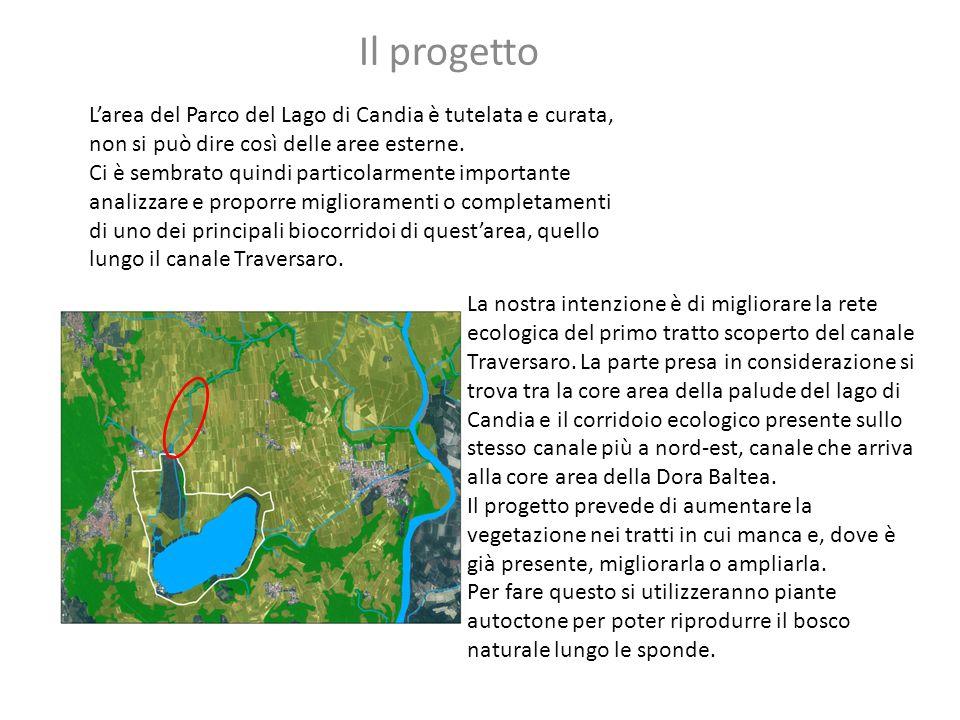 Il progetto L'area del Parco del Lago di Candia è tutelata e curata, non si può dire così delle aree esterne.