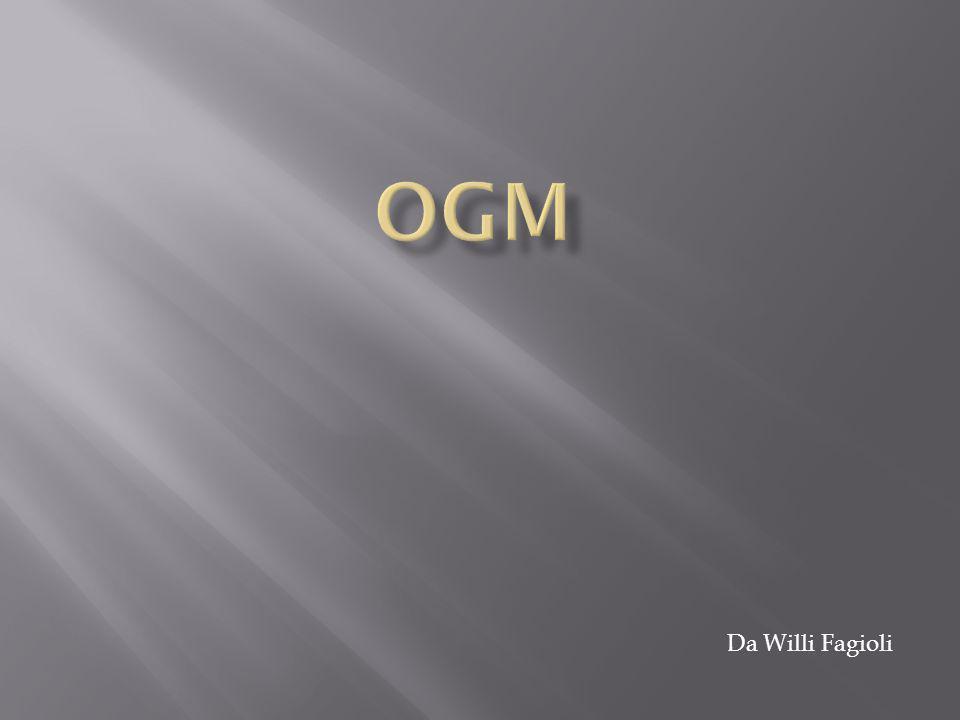 OGM Da Willi Fagioli