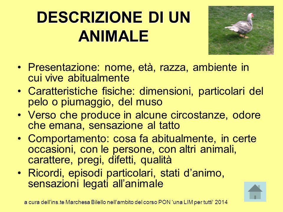 DESCRIZIONE DI UN ANIMALE