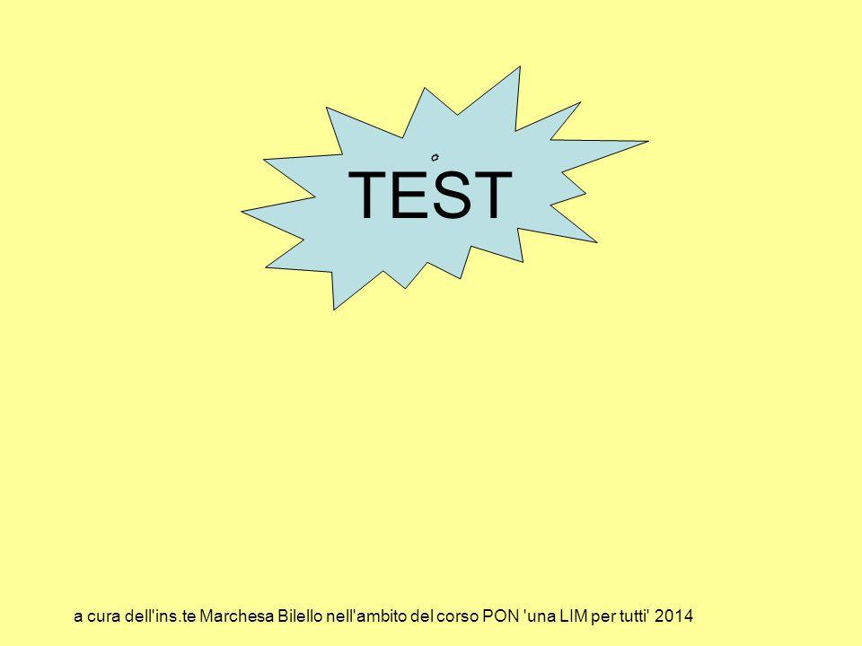 TEST a cura dell ins.te Marchesa Bilello nell ambito del corso PON una LIM per tutti 2014