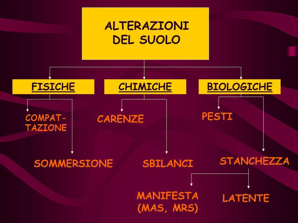 ALTERAZIONI DEL SUOLO FISICHE CHIMICHE BIOLOGICHE PESTI CARENZE
