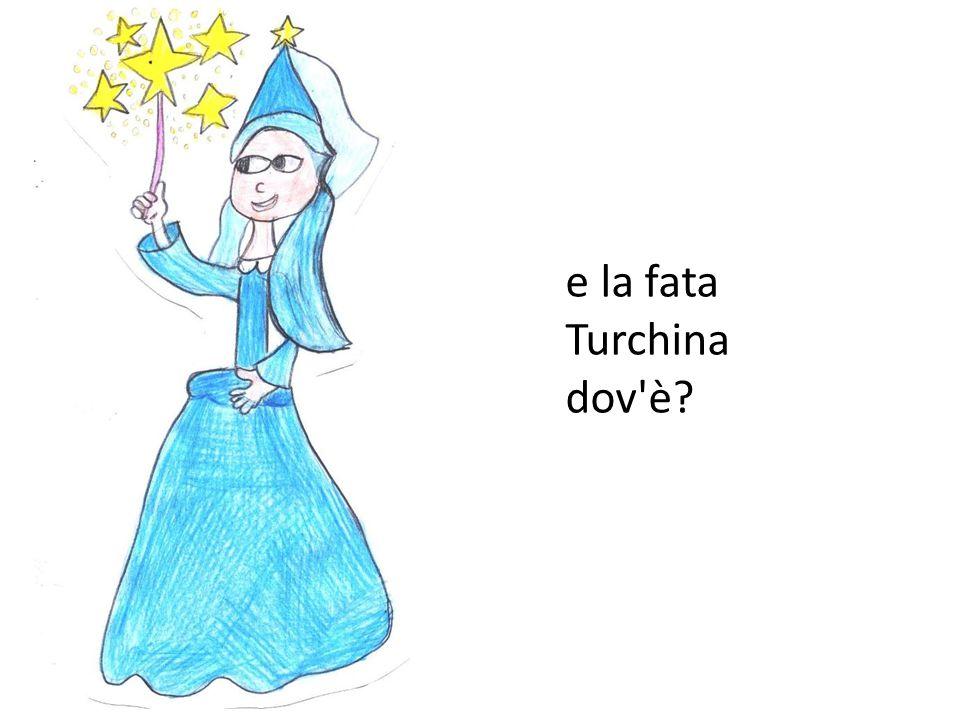 e la fata Turchina dov è