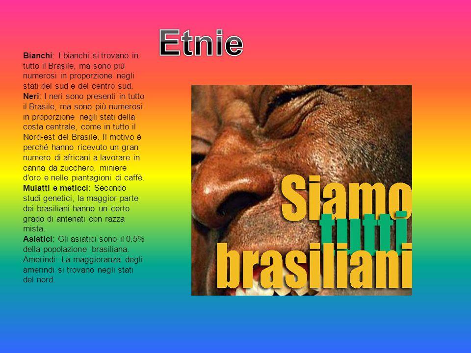 Etnie Bianchi: I bianchi si trovano in tutto il Brasile, ma sono più numerosi in proporzione negli stati del sud e del centro sud.