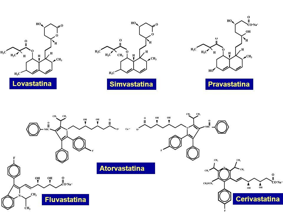 Lovastatina Simvastatina Pravastatina Atorvastatina Fluvastatina Cerivastatina