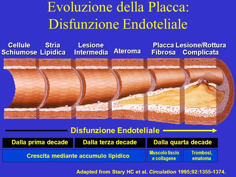 Evoluzione della Placca: Disfunzione Endoteliale