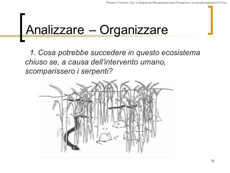 Analizzare – Organizzare