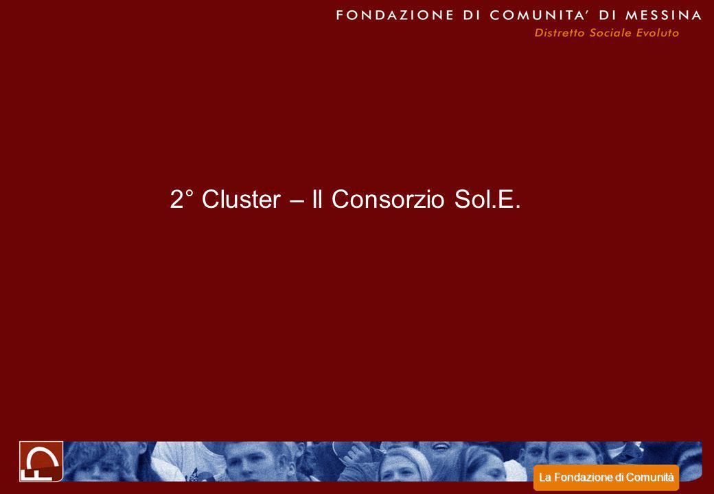 2° Cluster – Il Consorzio Sol.E.