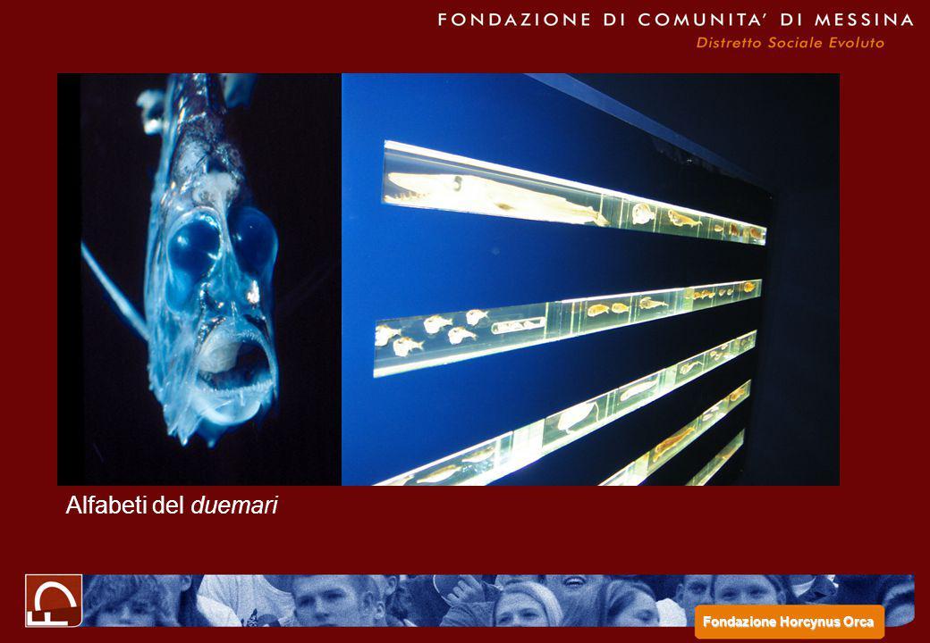 Alfabeti del duemari Fondazione Horcynus Orca