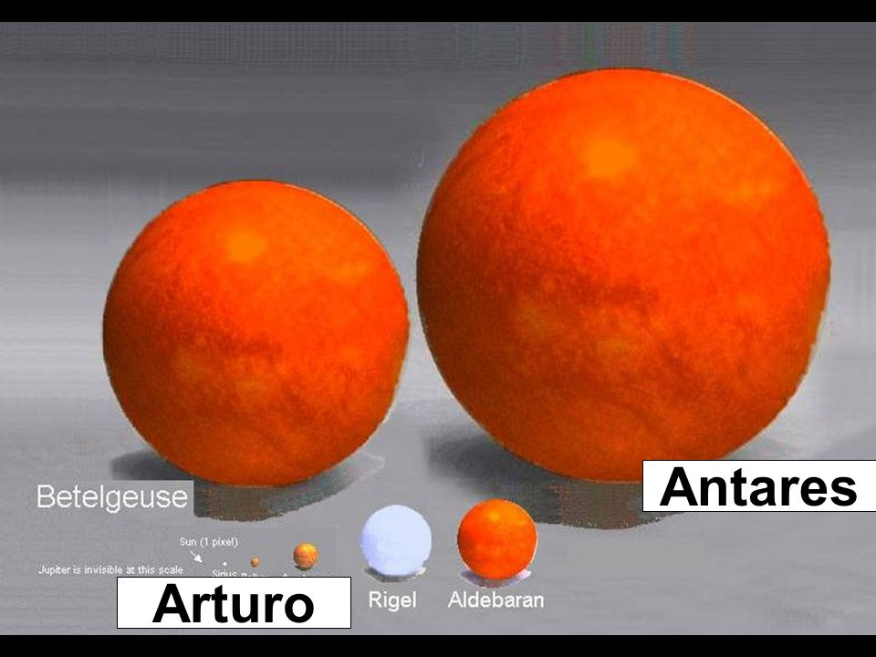 Antares Arturo
