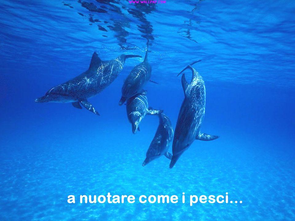 a nuotare come i pesci…