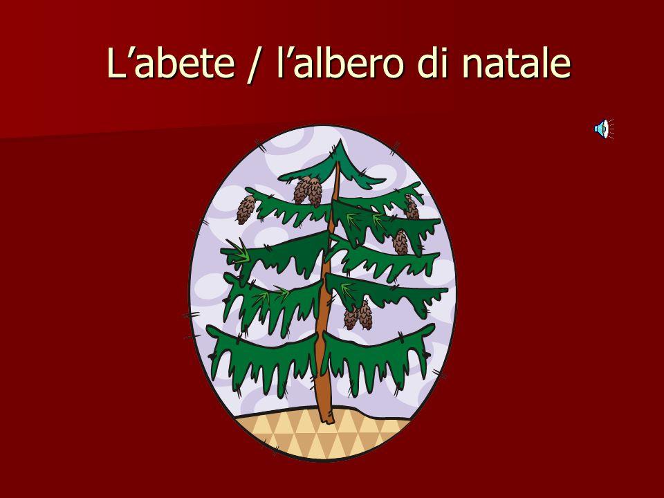 L'abete / l'albero di natale