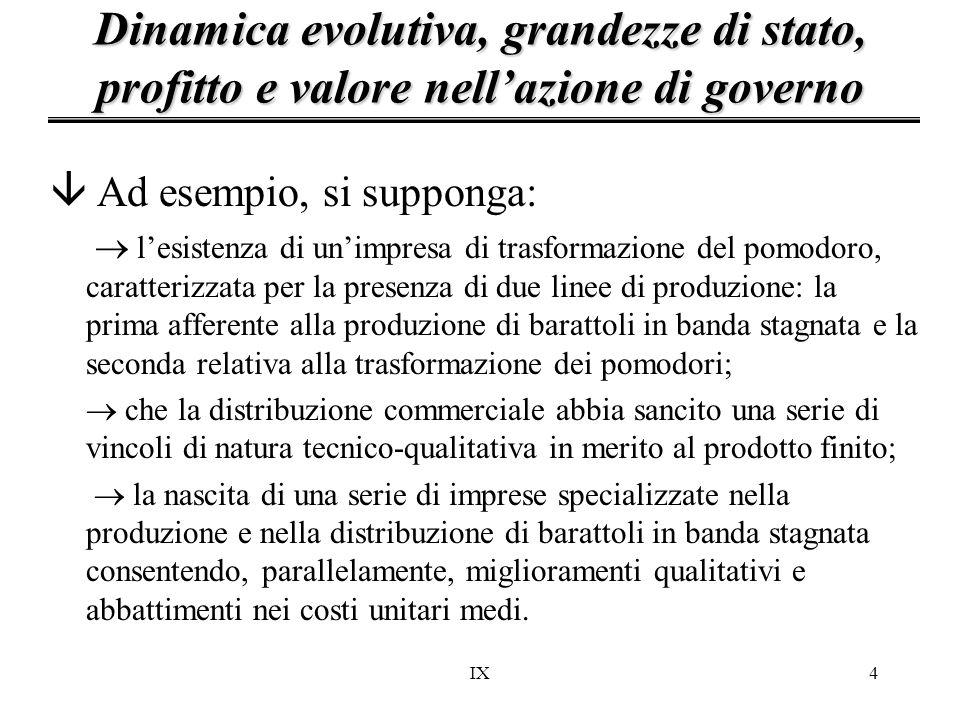 Dinamica evolutiva, grandezze di stato, profitto e valore nell'azione di governo