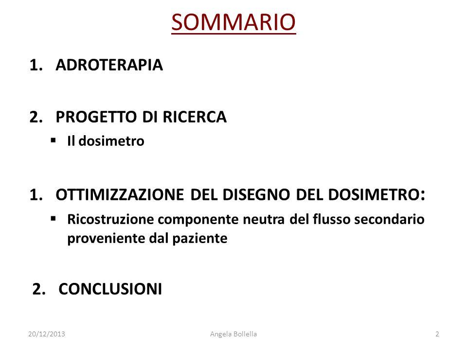 SOMMARIO ADROTERAPIA PROGETTO DI RICERCA