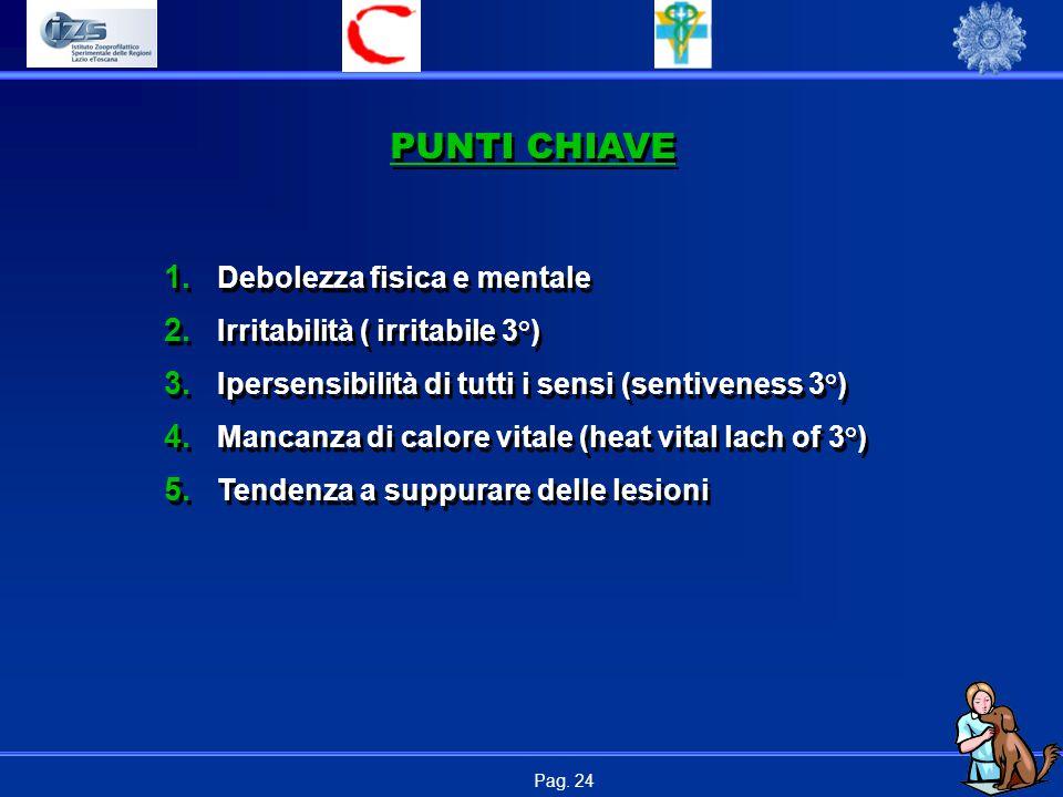 PUNTI CHIAVE Debolezza fisica e mentale Irritabilità ( irritabile 3°)