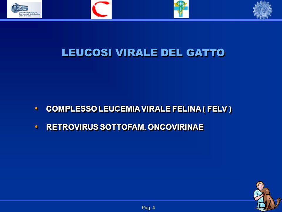 LEUCOSI VIRALE DEL GATTO