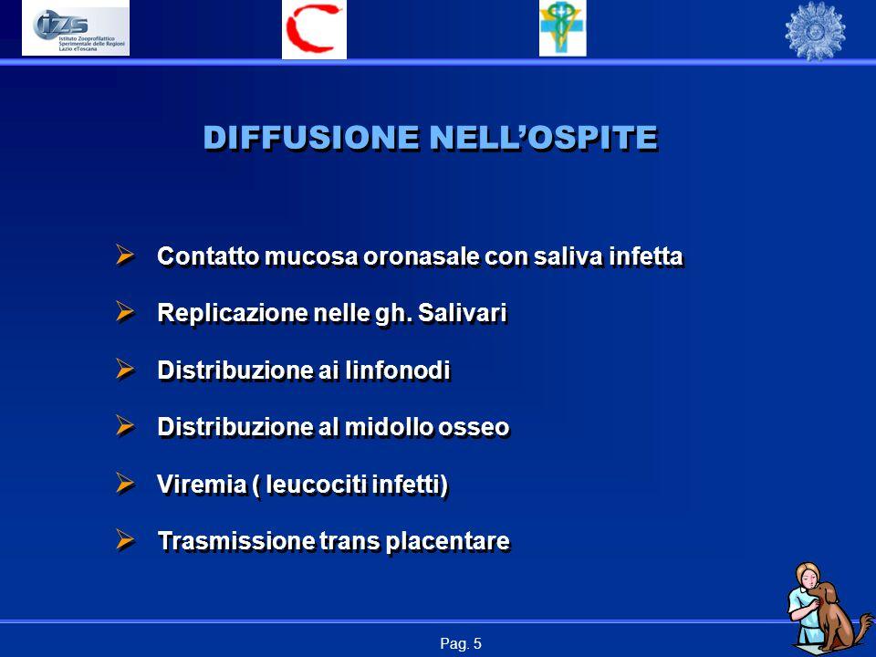 DIFFUSIONE NELL'OSPITE