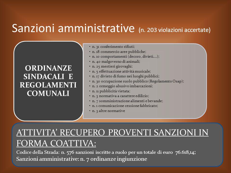 Sanzioni amministrative (n. 203 violazioni accertate)