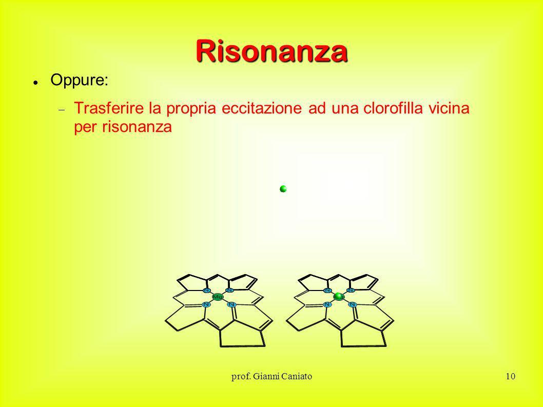 Risonanza Oppure: Trasferire la propria eccitazione ad una clorofilla vicina per risonanza.