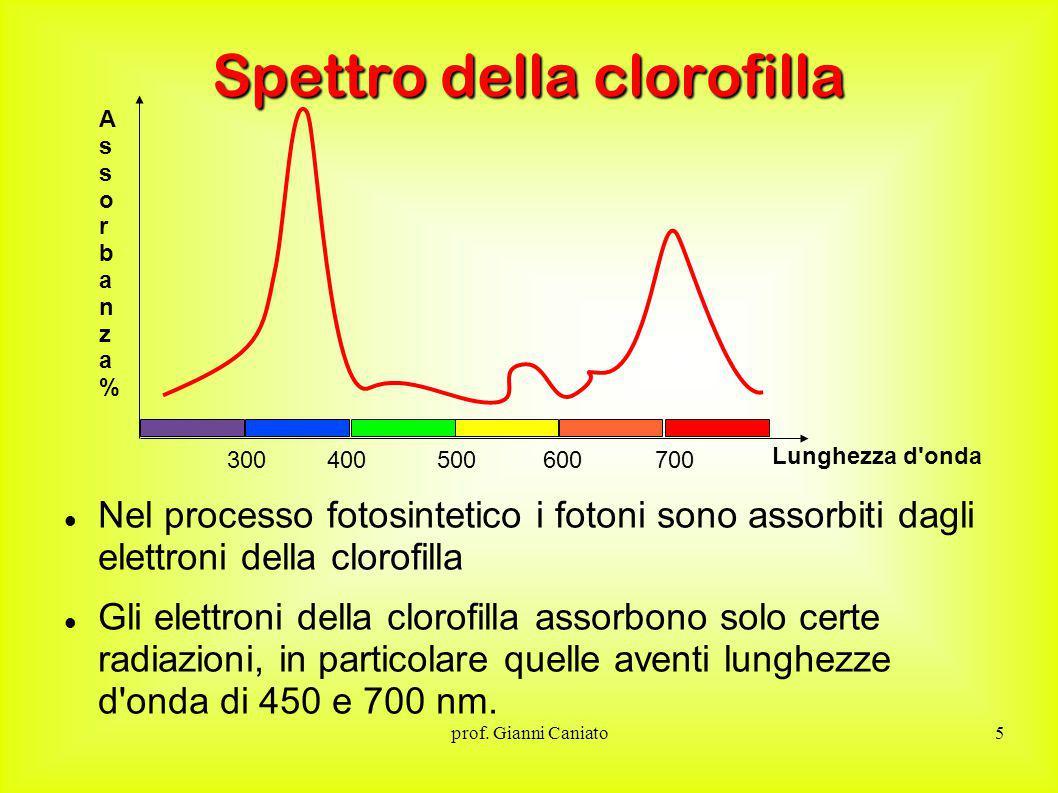 Spettro della clorofilla