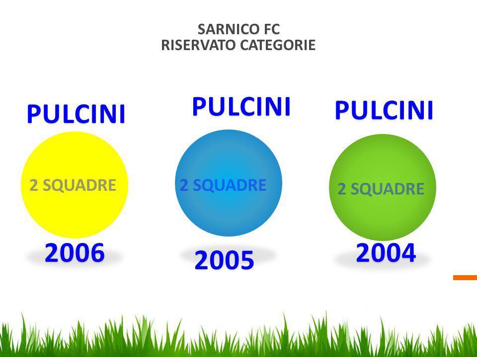 PULCINI PULCINI PULCINI 2006 2004 2005