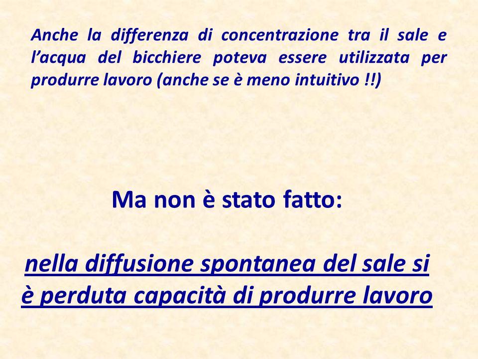 Anche la differenza di concentrazione tra il sale e l'acqua del bicchiere poteva essere utilizzata per produrre lavoro (anche se è meno intuitivo !!)