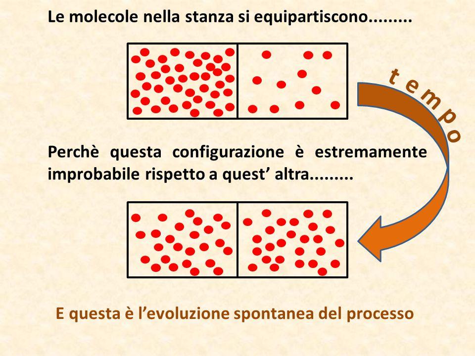 t e m p o Le molecole nella stanza si equipartiscono.........